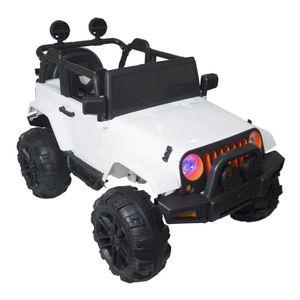 Mini Jipe Elétrico Infantil 12v Controle BW028-BR Importway
